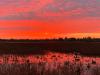 Massena-duck-hunting.png