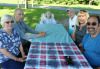 Massena-picnic-in-the-park.png