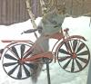 Massena-squirrel-bike.png