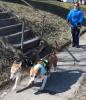 Massena-woman-2-dogs.png