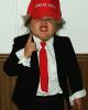 Mini-Donald-Trump.png
