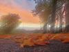 Norfolk-autumn-sunset.png
