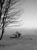 Oburg-river-fog.png