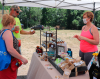 Ogdensburg-Farmers'-Crafts-and-Art-Market-Irish-Bee.png