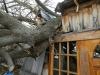 Ogdensburg-Storm-Damage.png