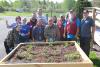 Ogdensburg-UH-planting.png