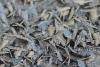 Ogdensburg-frost.png