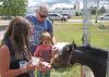 Ogdensburg-horse-feeding.png