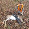 Ogdensburg-youth-deer.png