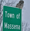Owl-sign-massena.png