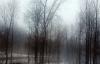 Pierrepont-fog.png