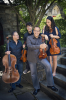 Potsdam-CPS-Dali-Quartet.png