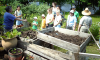 Potsdam-Compost.png