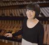Potsdam-Crane-xylophonist.png