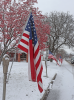 Potsdam-Veterans-Day-flag.png