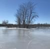 Potsdam-ice.png