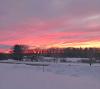 Potsdam-pink-sunset.png