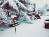 Potsdam-snow-yard.png