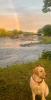 Rensselaer-Falls-rainbow.png