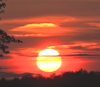 Richville-Sunset-Dafoe.png
