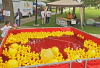 Rubber-ducks-Potsdam.png