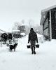 SnowChores.png