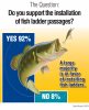 Survey-Graphic-J5-fishing-color.png