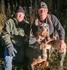 Waddington-dog-tracker.png