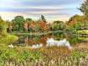 Waddington-fall-colors.png