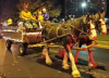 Waddington-horse-wagon.png