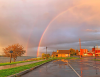 Waddington-rainbow.png