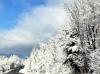 Winthrop-winter-wonderland.png