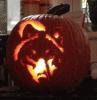 Wolf-pumpkin-Potsdam.png