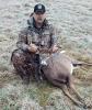 deer-dead-hermon.png