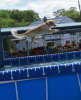dockdogs Gracie Canton 2.png