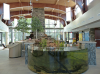massena-nature-center1.png