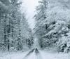 snow-road-Brasher-Falls.png